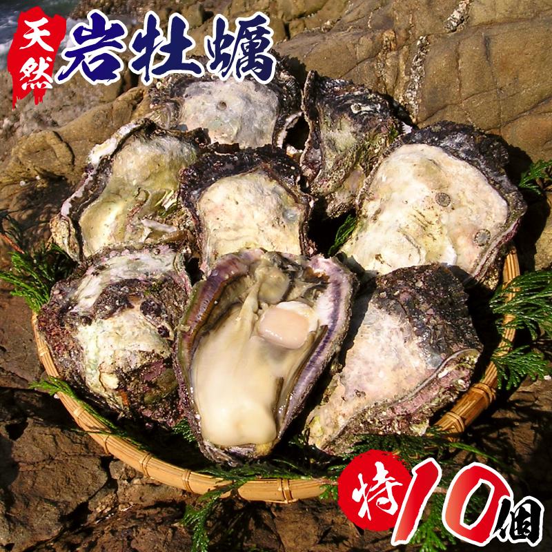 C028 延岡産天然岩牡蠣(生食用)特サイズ10個(2021年4月から発送開始)