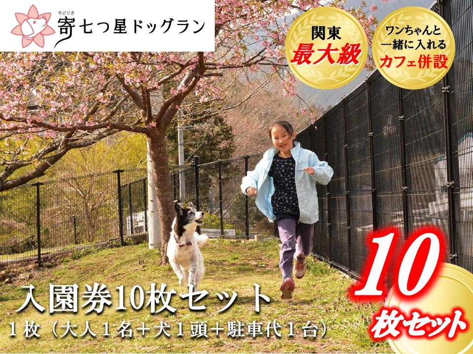 【寄七つ星ドッグラン&カフェ】入園券10枚セット