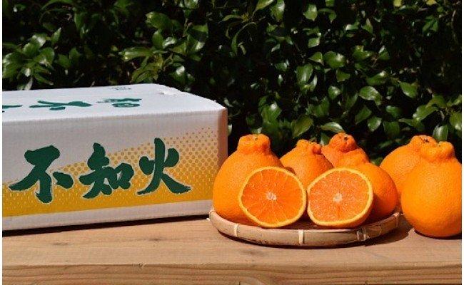 ZE6177_【まごころ手選別】和歌山県産 有田の不知火 約4kg