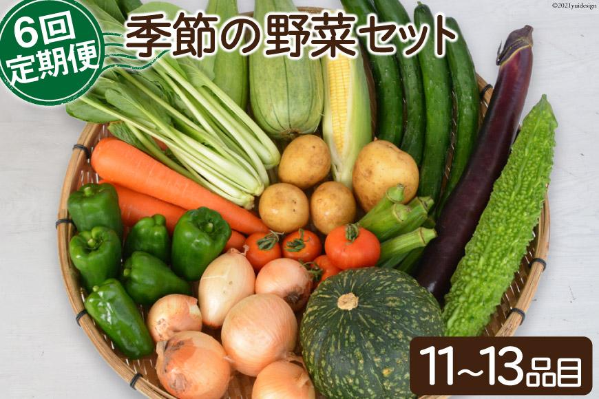 【6回定期便】季節の野菜セット<ながさき南部生産組合>【長崎県南島原市】