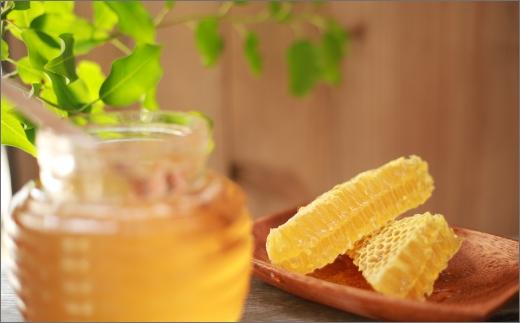 京丹後産巣蜜(250g)KYOTOTANGOHONEY森の百花蜜 純粋非加熱天然ハチミツ