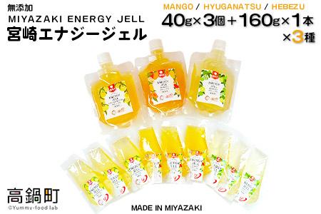 <宮崎エナジージェル 低GI 9個+ボトル3本セット>翌月末迄に順次出荷【c225_ht】