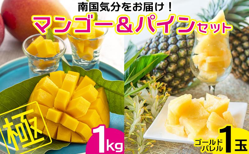 【2021年発送】南国気分をお届け!完熟マンゴー極1kg&ゴールドパイン1玉セット