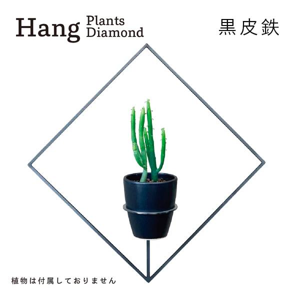 GRAVIRoN Hang Plants シリーズ Diamond 黒皮鉄(プランツハンガー)