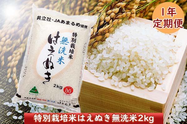 <12月開始>庄内米1年定期便!特別栽培米はえぬき無洗米2kg(入金期限:2021.11.25)
