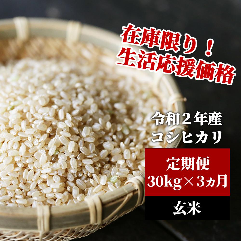 <令和2年産>K5定期便 あわくら源流米 コシヒカリ 玄米30kg×3