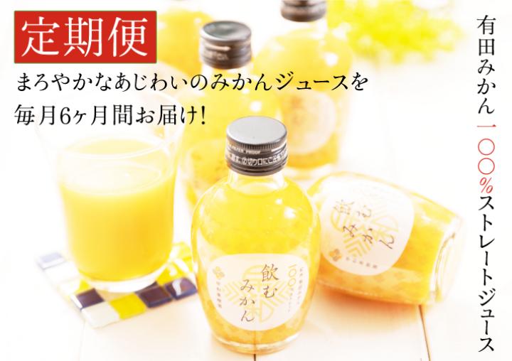 400.【定期便】飲むみかん20本×6ヶ月お届け