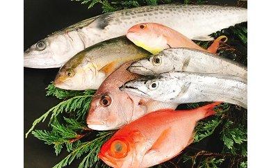 67 太刀魚と旬の魚の大盛セット