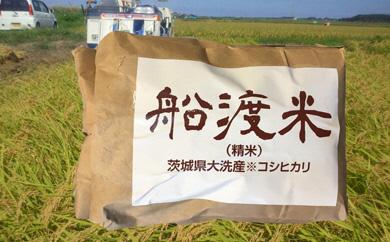 AZ005_舟渡米 大洗産コシヒカリ 5kg