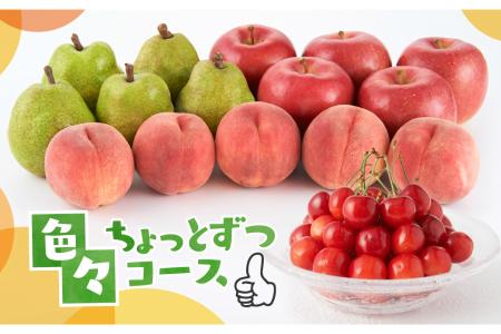 色々ちょっとずつコース(2021年6月中旬~下旬 さくらんぼからスタート)【定期便】 さくらんぼ 桃 ラ・フランス りんご P-1504