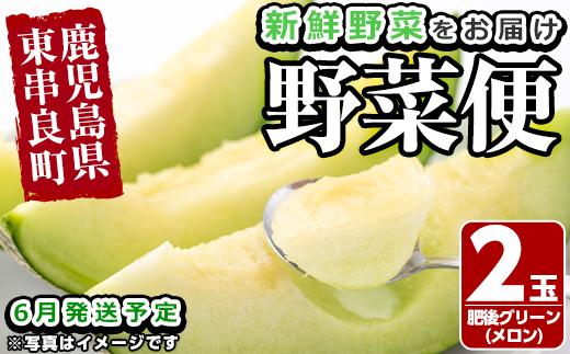 【13597】自慢の農家×老舗青果店 新鮮でおいしい野菜便(メロン)【6月発送】【有留青果】