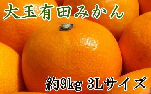 ZD6321_【食べごたえ十分】有田みかん大玉約9kg(3Lサイズ・秀品)