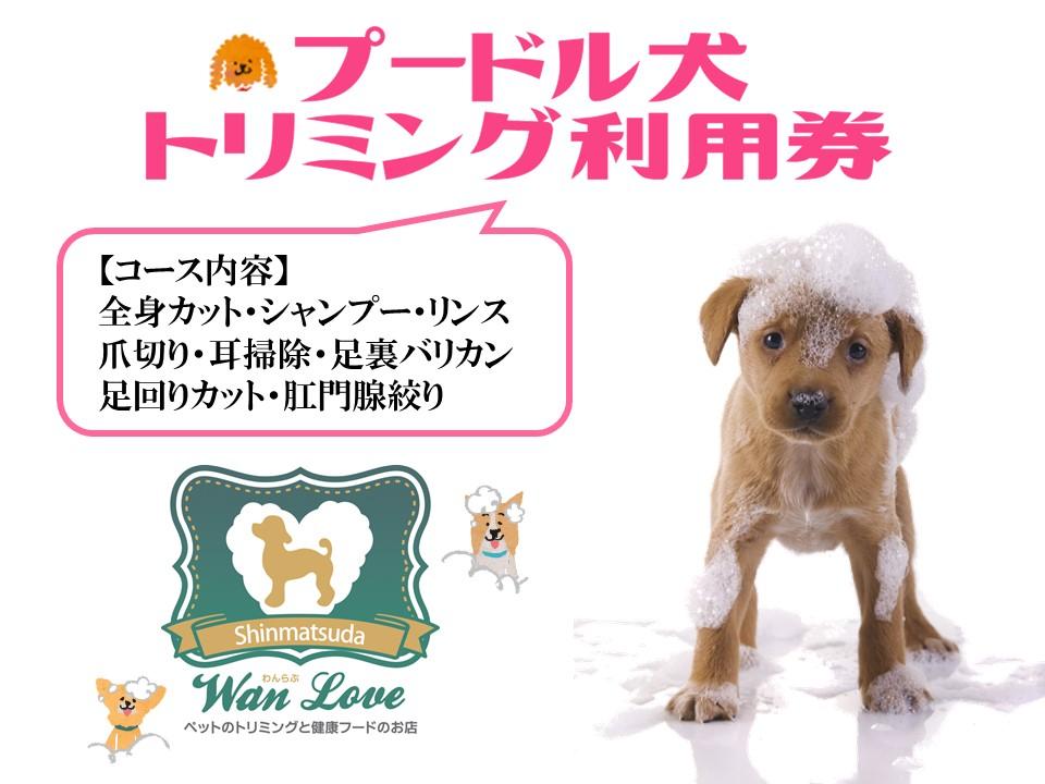 【プードル犬】トリミング利用券(1回)