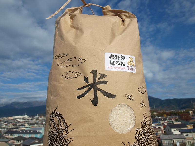 017-09大地の秦野の米(はるみ)10kg