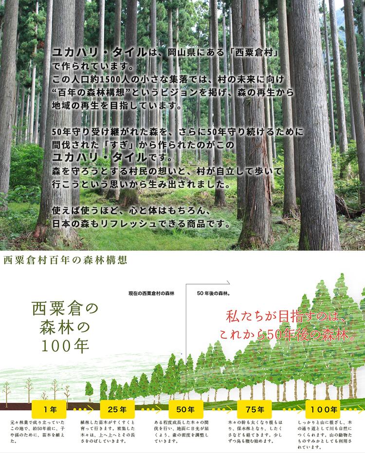 hyakumori.jpg