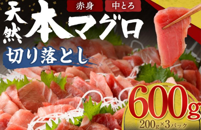 TK020高豊丸 天然本マグロ (赤身・中とろ) 切り落とし 600g (200g×3パック) まぐろ マグロ 鮪 刺身 刺し身 ちらし寿司 手巻き寿司 海鮮丼 海鮮 魚介類 食べきりサイズ 小分け 冷凍