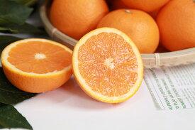 ZA94066_田村の清見オレンジ 約4.5kg(大玉:2L~4Lサイズ)【紀州グルメ市場】
