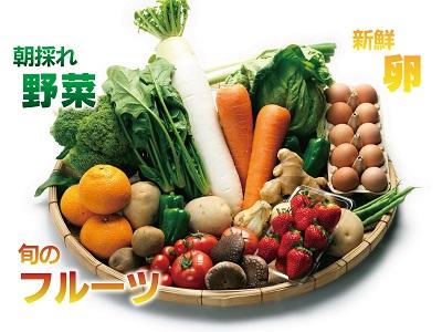 AD038【定期便】野菜・フルーツ・卵 旬のお任せセットA 年12回お届け