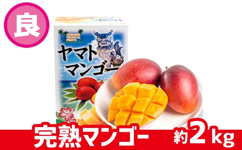 【2022年発送】ヤマト農園 完熟マンゴー約2kg(良品)