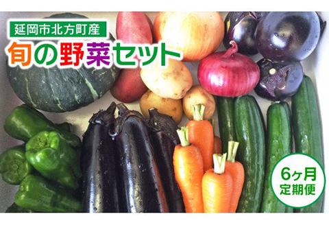 F007 【定期便】延岡市北方産 旬の野菜セット(6月~11月定期便)