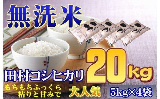 TC4-9【無洗米】田村市産コシヒカリ20kg(5kg×4袋) 【令和2年産】