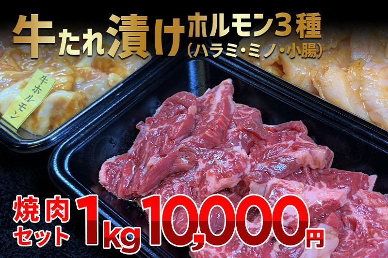 010B506 牛たれ漬けホルモン3種(ハラミ・ミノ・小腸)焼肉セット 1kg