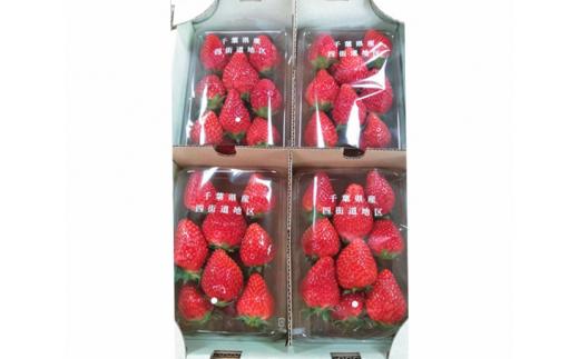 No.129 中村農園 いちご(トチオトメ)約1kg / とちおとめ 苺 イチゴ 完熟 朝採り 千葉県 特産品