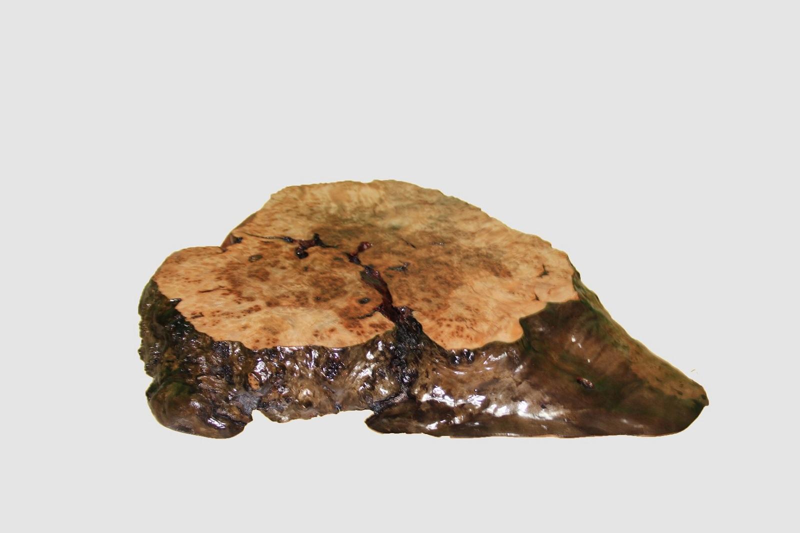 【43】座卓(テーブル)埋もれニレ・一枚天板【厚さ約5.5cm】