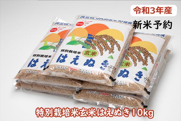 令和3年産米 特別栽培米玄米はえぬき10kg