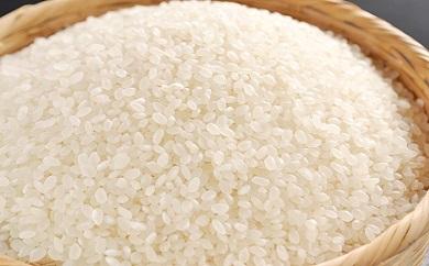 令和2年産 近江米 みずかがみ【10kg(5Kg×2袋)】環境こだわり米【AB61SM】