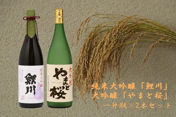 純米大吟醸「鯉川」・大吟醸「やまと桜」2本セット(1800ml×2本)