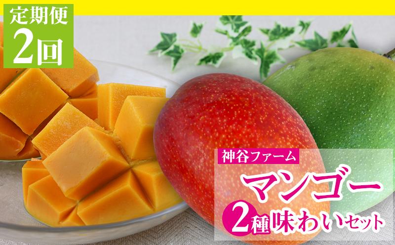 【2021年発送・定期便2回】神谷ファームのマンゴー2種味わいセット