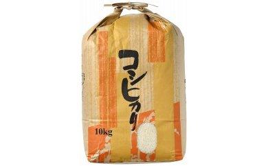 【輪島のお米】町野町産コシヒカリ10kg(精米)