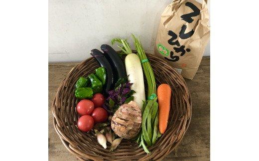 D-288 新鮮野菜と山口ブランド阿東米セット