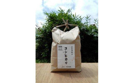 幸田町産コシヒカリ5kg 「栄養週期栽培米」 農薬は除草剤1回使用 (幸田町寄附管理番号1910)