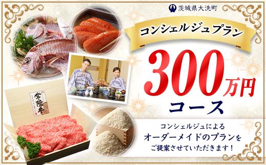 ZZ005_【提案型】あなただけのコンシェルジュプラン(300万円コース)
