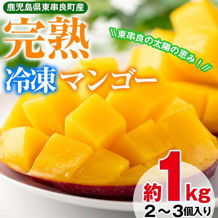 【13846】《数量限定》鹿児島県産!南国の恵み!まるごと冷凍完熟マンゴー約1kg(2~3個)【甘宮】