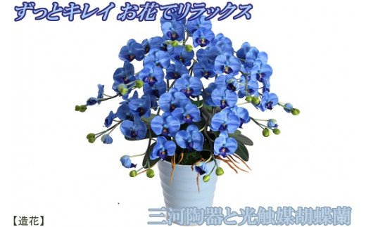 綺麗で丈夫な三河陶器で贈る 光触媒胡蝶蘭(スカイブルーの陶器×青色の花) H100-007
