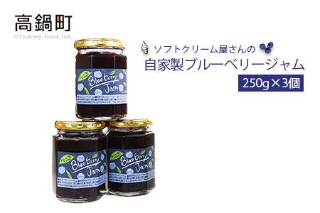 <自家製ブルーベリージャム250g×3>2か月以内に順次出荷【c584_sn】