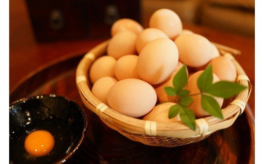 名古屋コーチン卵(30個入り)[006K01]