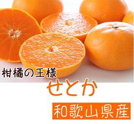 AB6302_【先行予約】柑橘の王様 和歌山有田の濃厚せとか