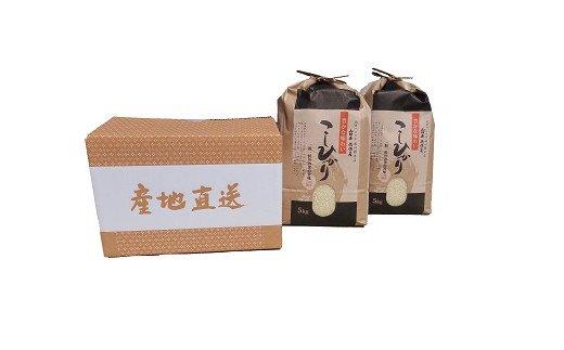D-216 山口県徳佐産 特選こしひかり 10kg(5kg×2袋)