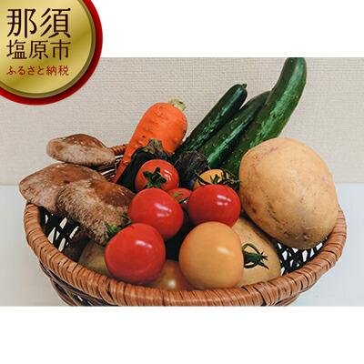 154-1025-04 季節の野菜お試しセット(全5~7品)