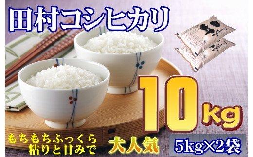TB2-42【令和2年産】田村市産コシヒカリ10kg