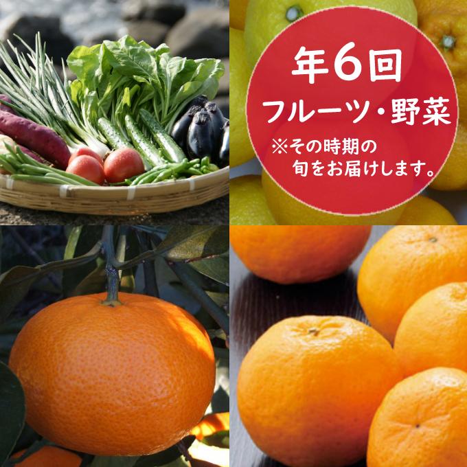 RK064フルーツ・野菜年6回定期便(11月~4月)