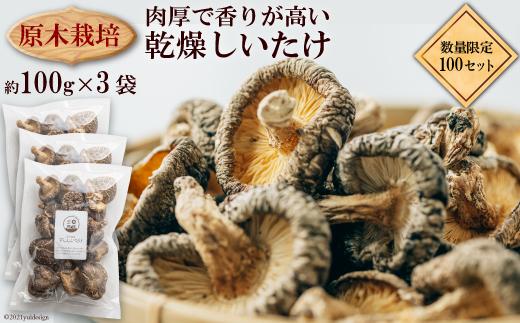 原木栽培 乾燥しいたけ 約100g×3 / 肉厚 熊本県 特産<日添>【熊本県五木村】