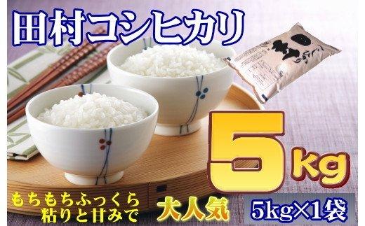TA6-10【令和2年産】 田村コシヒカリ5㎏