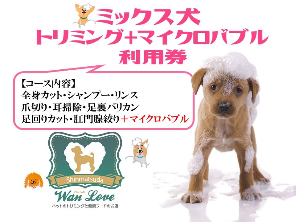 【ミックス犬】トリミング+マイクロバブル利用券(1回)