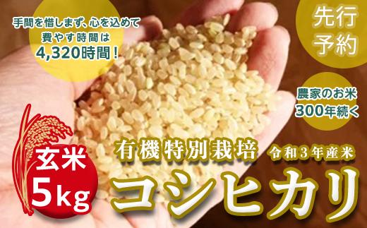 【先行予約】<令和3年産新米>三百年続く農家の有機特別栽培コシヒカリ(玄米5kg)