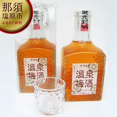 154-1016-02那須塩原温泉梅酒(お猪口2ヶ付)